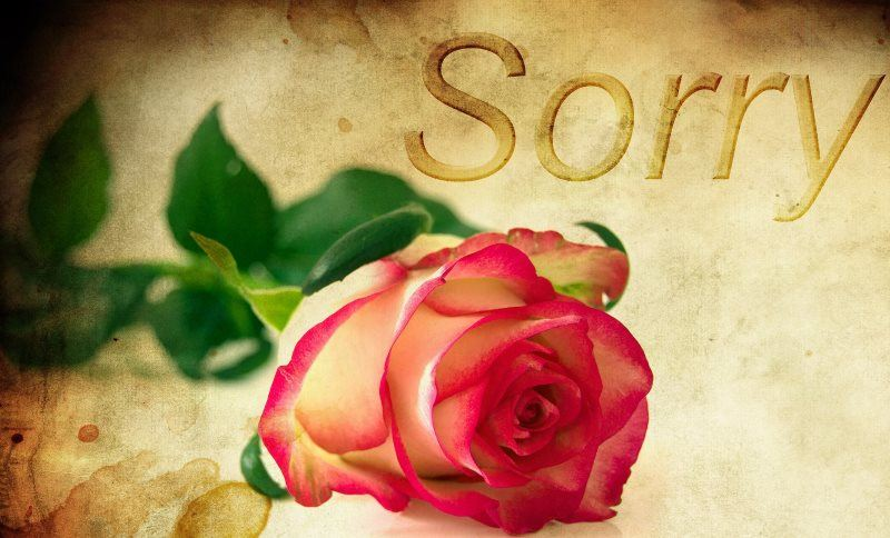 Sorry with Rose Background