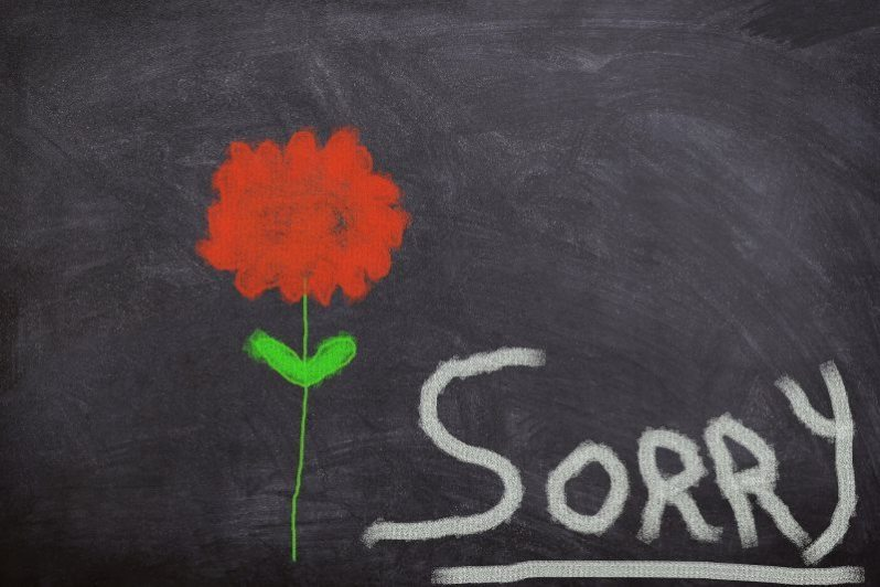 Sorry on Black Board with Red Flower