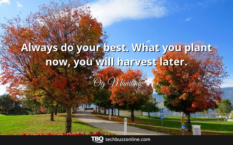 Motivational Quotes 9