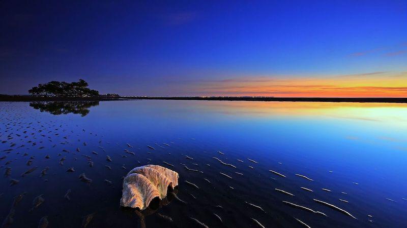 beach summer water sky horizon