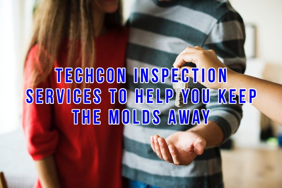techcon inspection
