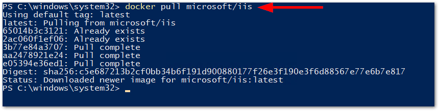 Windows Server 2019 Generally Available: Pulled IIS