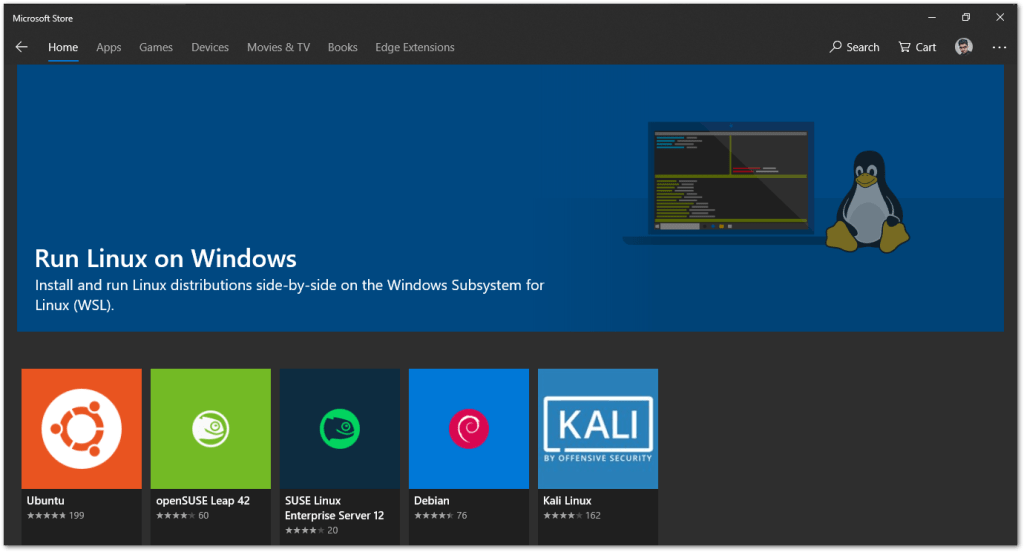 Windows Subsystem for Linux : Microsoft Store
