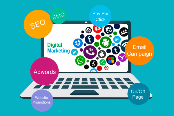 Habits of Successful SEO Professionals to Boost your Startup Business