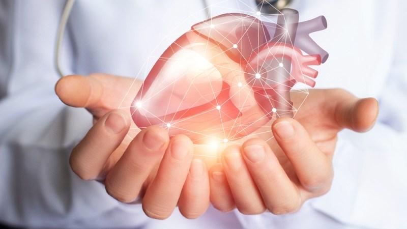 Cardiac Health And Erectile Dysfunction