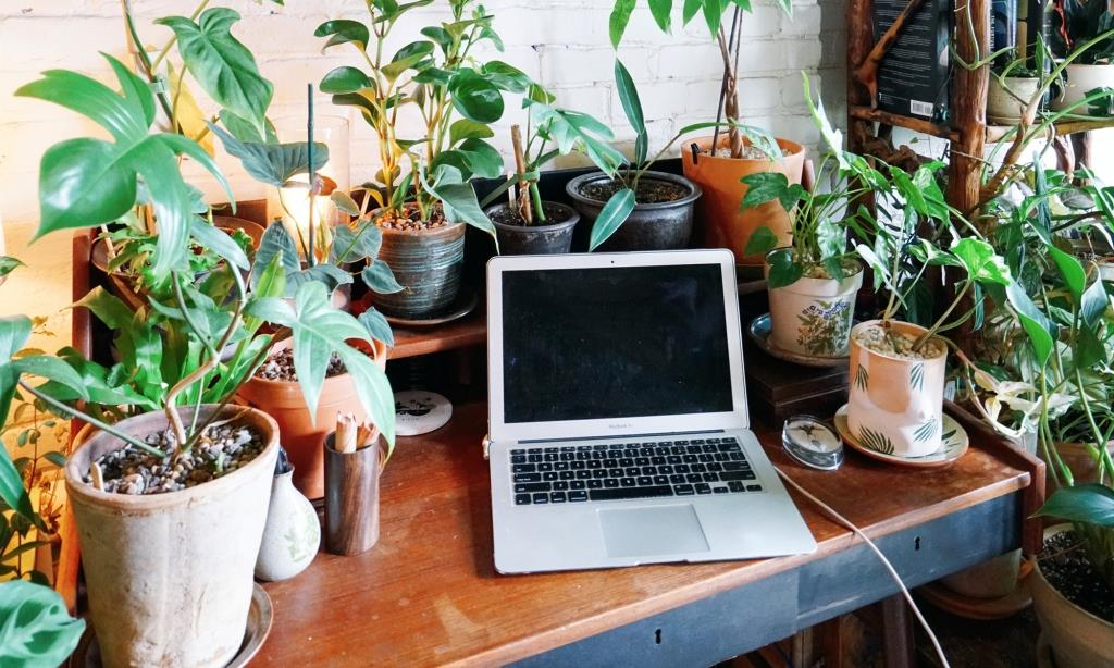 7 Things To Do To Improve Your Working From Home Experience