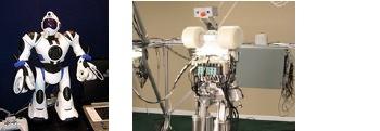 08-robosapien-anybots.jpg