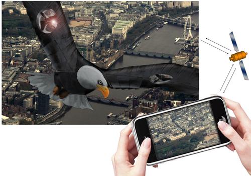 1022_image1_flying_eagle.jpg