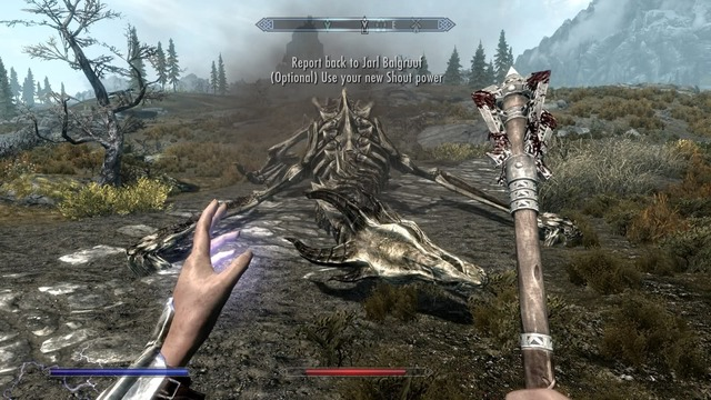 skyrim_field_of_view.jpg