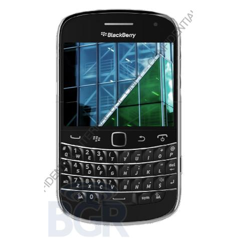 blackberry-dakota.JPG