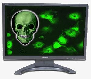 computer-virus.jpg