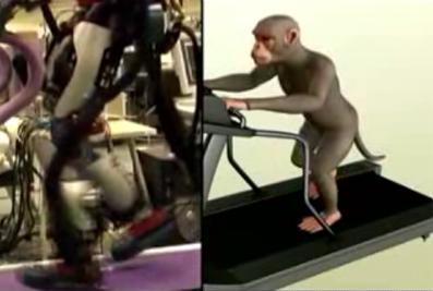 monkey-robot.jpg