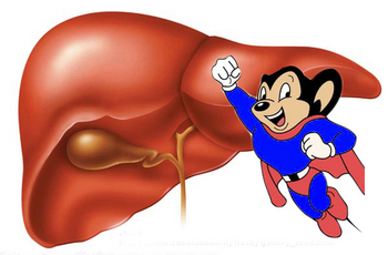 mouse-liver.jpg