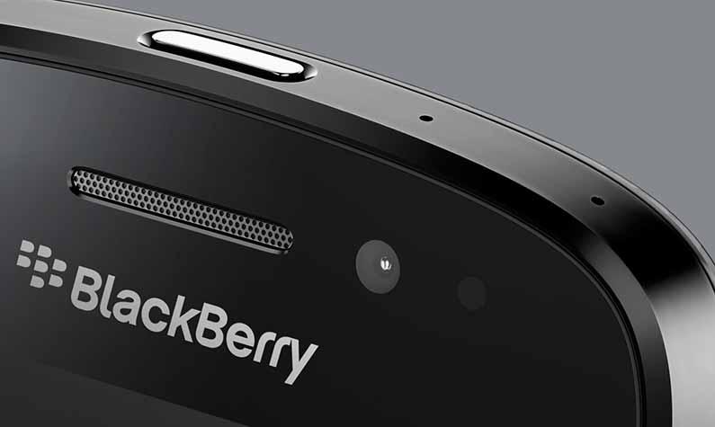 blackberry-closeup