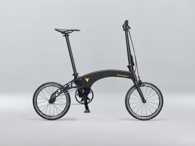 Hummingbird_Bike carbon.jpg