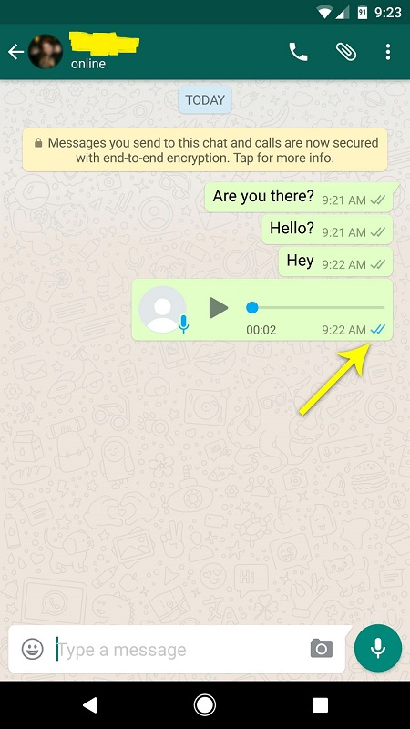 "How to know your friend has read your message on WhatsApp when they have disabled the ""Read Receipts"" option"