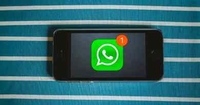 whatsapp any file format feature