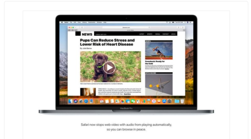 how to disable video autoplay on safari browser