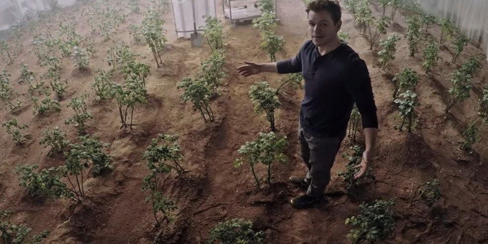 Cultivar em solo alienígena