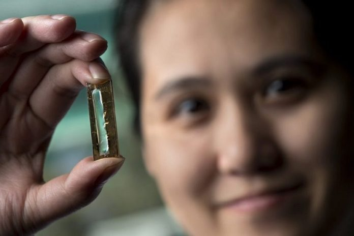 Mya Le Thai with Nanowire-based battery on hand