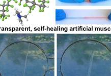 A Transparent, Self-healing, Highly Stretchable Ionic Conductor
