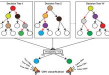 A random-forest, machine-learning method for identifying copy number variation from exome-sequencing data. A forest of hundreds of decision trees is trained on a validated set of genetic deletions and duplication, the model built from these trees can then be used to accurately identify copy number variation in sample exome-sequencing data. IMAGE: GIRIRAJAN LABORATORY, PENN STATE