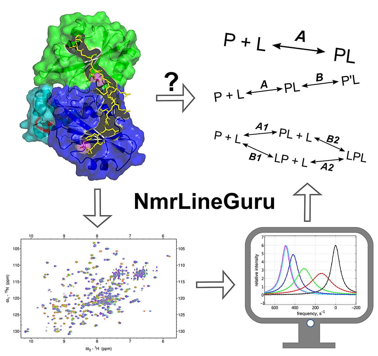A digital approach to proteins and cancer