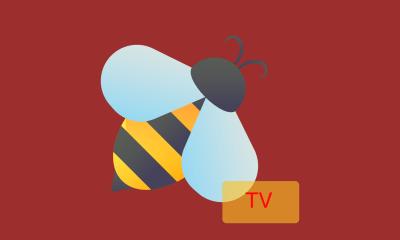 BeeTV On FireStick