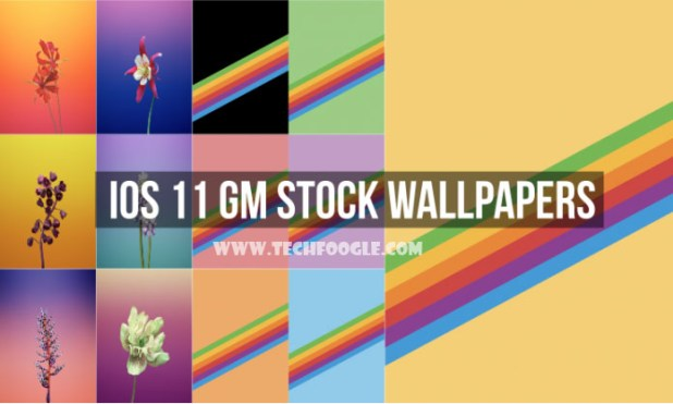 iOS-11-GM-Stock-Wallpapers-TechFoogle-696x418