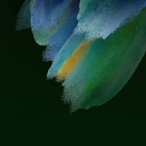 Samsung Galaxy S21 FE Leaked Wallpapers TechFoogle (1)