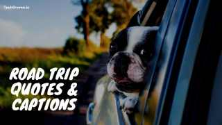 Road Trip Quotes & Captions For Instagram, Road Trip Quotes With Friends, Road Trip Quotes For Instagram, Adventure Road Trip Quotes, Funny Road Trip Captions For Instagram, Road Trip Captions For Instagram, Awesome Road Trip Captions, Road Trip Quotes.