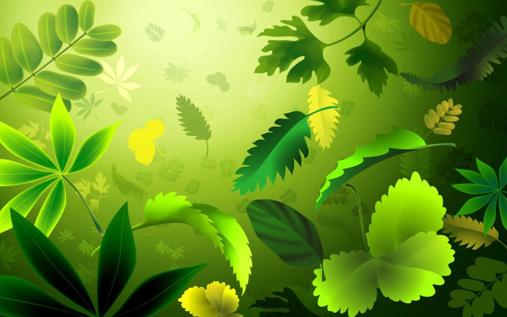 Free HD computer background nature leaves