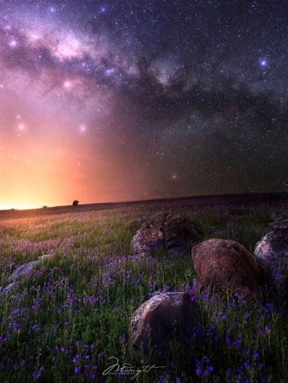 Amazing nature phone backgrounds