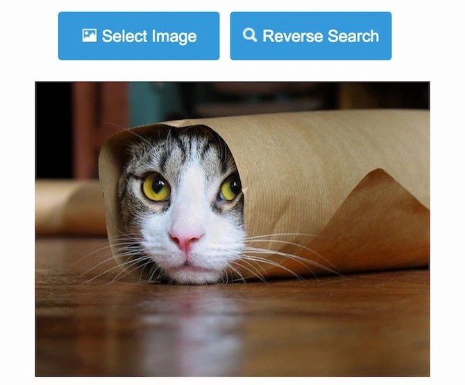 Reverse Image Search from computer mobile and tablets