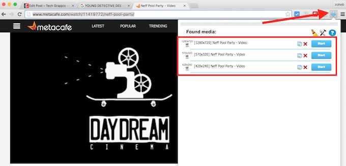 Download Flash Video