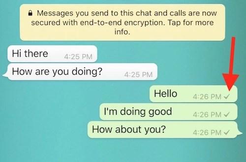 WhatsApp Seocnd Tick