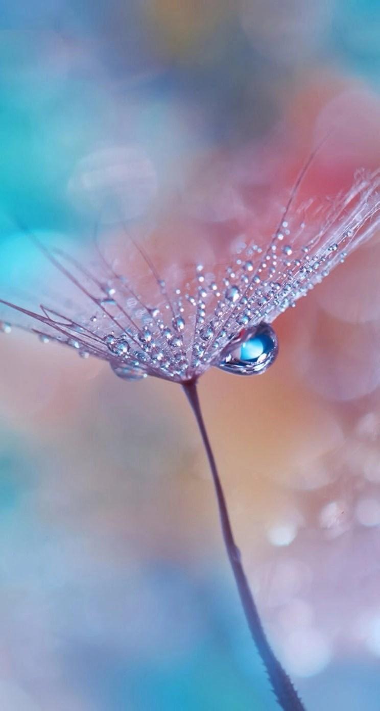 water drop wechat theme