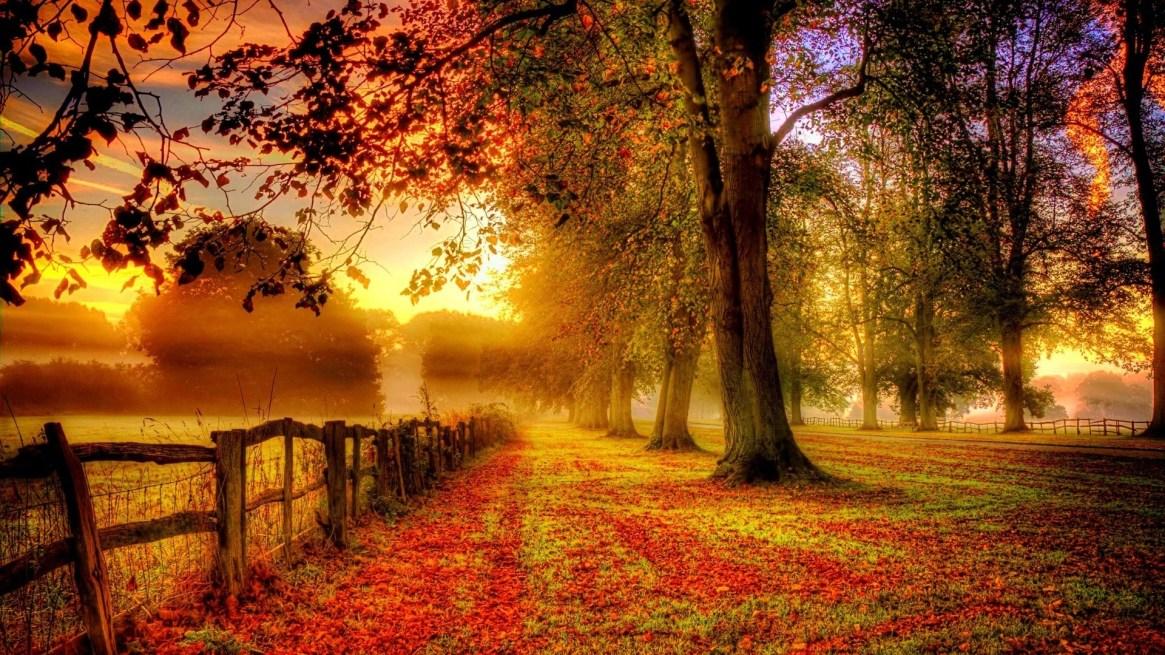 autumn-wallpapers-6
