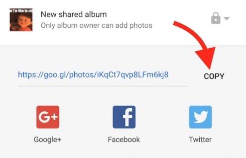 copy-google-photos-image-link