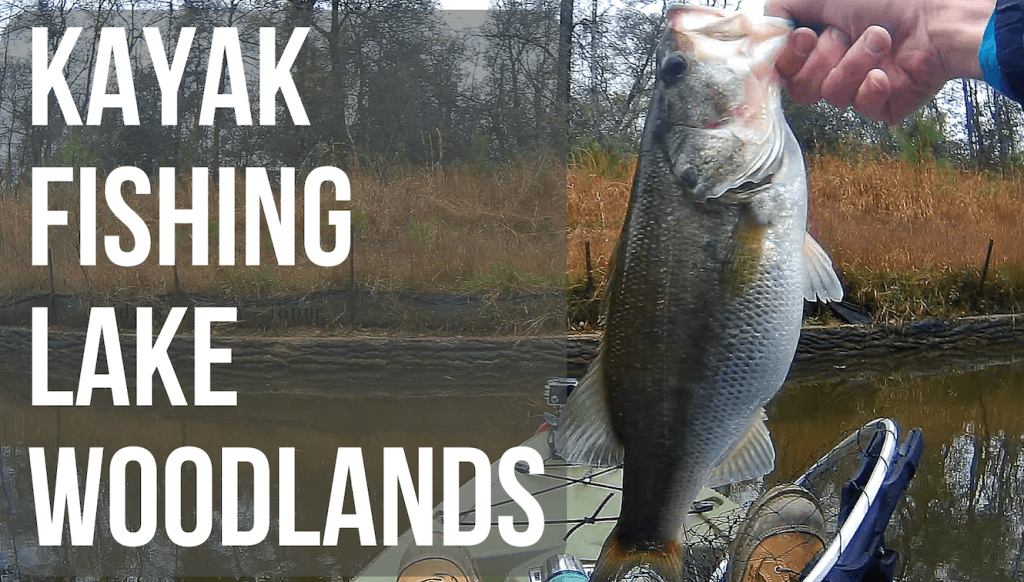 Kayak Fishing Lake Woodlands | Largemouth Bass & Channel Catfish