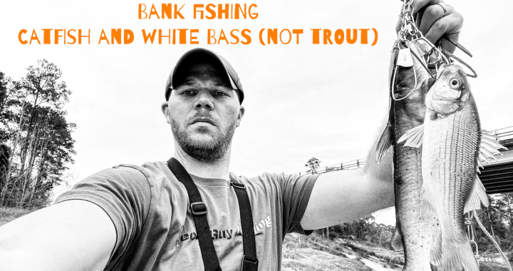 Bank Fishing Catfish and White Bass Not Trout