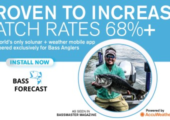 Bass Catches increase from 68% to 305%