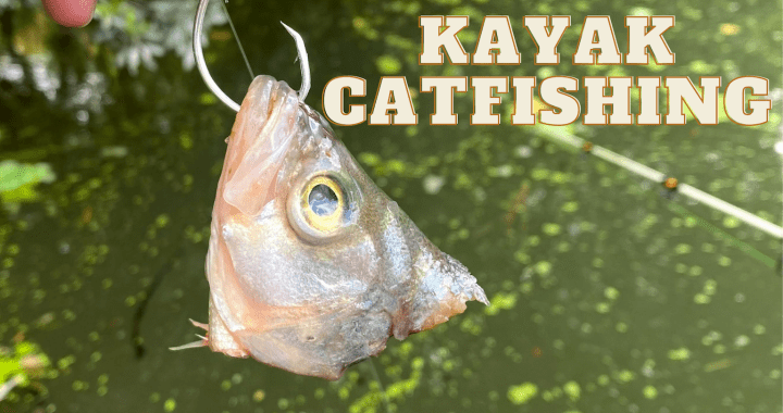KAYAK CATFISHING LAKE WOODLANDS