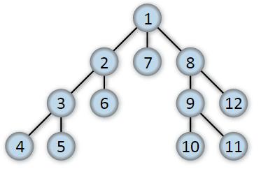 DFS Tree