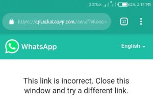 WhatsApp API Window Error