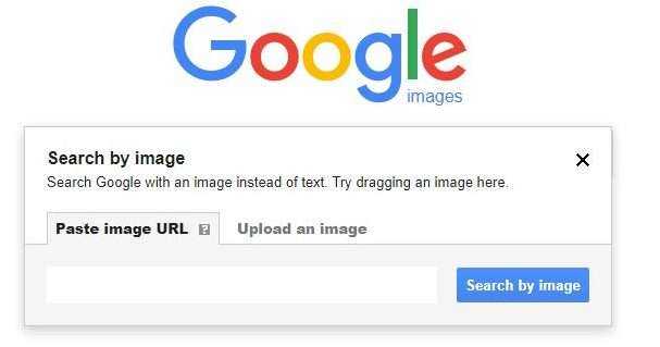 search by image paste image url