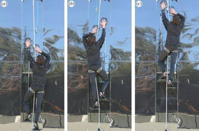 A man climbing glass surface using super climbing gloves