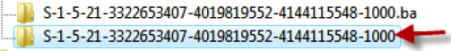 Right-click on the folder that has a .bak extension, and clicks onRename. Removethe .bakextension at the end and press ENTER