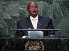 M7 at the UN