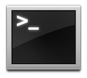 OS X Terminal App